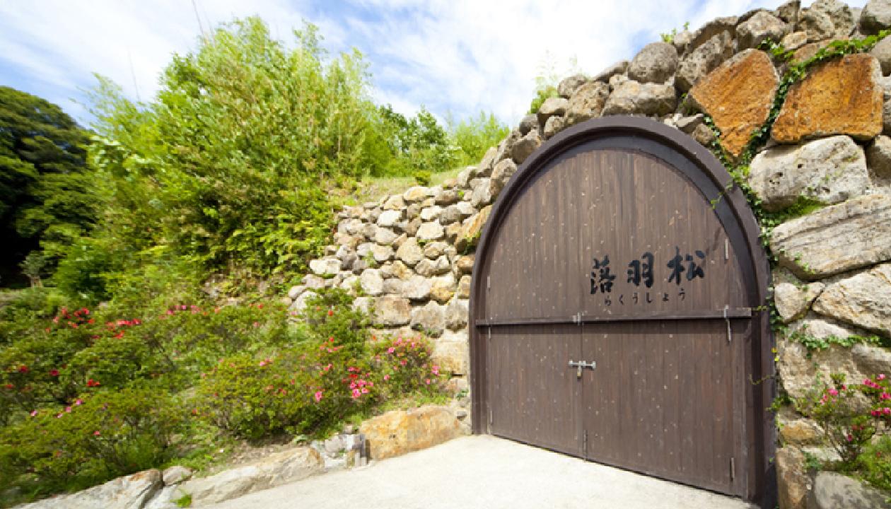 貯蔵洞窟「落羽松」(らくうしょう)